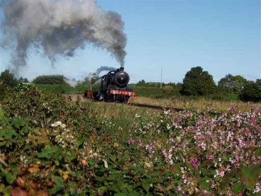 2010 - SDJR 2-8-0 No. 88 passing a colourful lineside near Williton Bridge on 26 September. This work is licenced under a Creative Commons Licence. © Malcolm Anderson